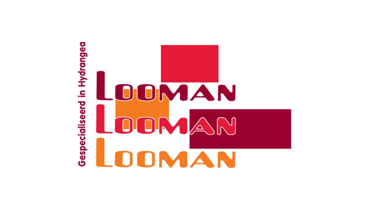 AdLooman_Logo