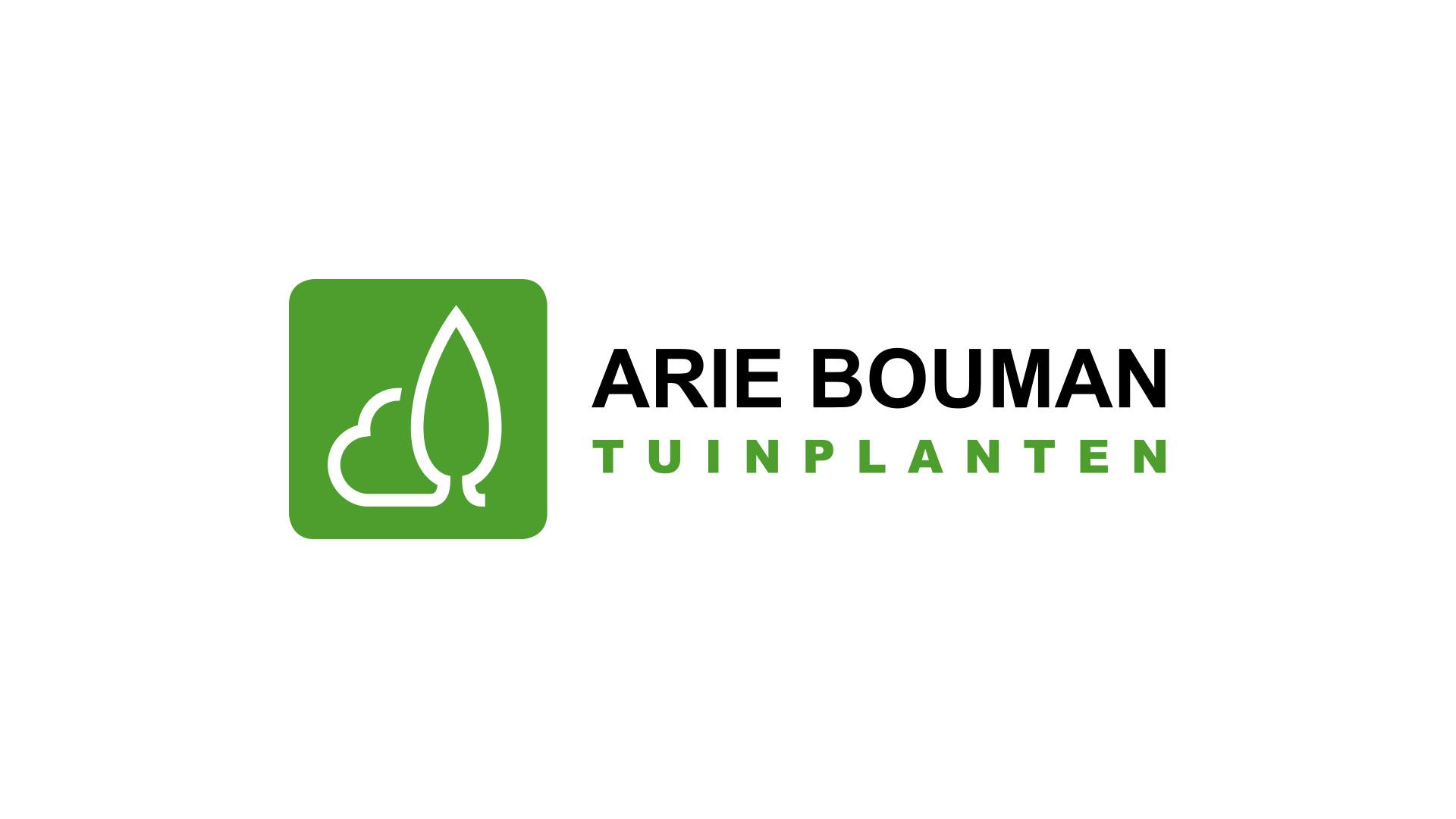 Arie Bouman tuiplanten
